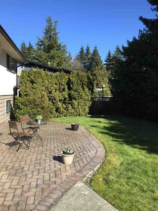 Photo 12: 2684 POPLYNN DRIVE in North Vancouver: Westlynn House for sale : MLS®# R2246384