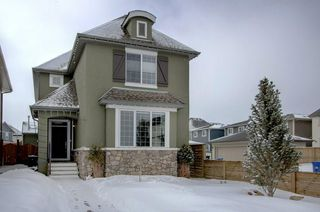 Photo 1: 341 MARQUIS Heights SE in Calgary: Mahogany House for sale : MLS®# C4177728