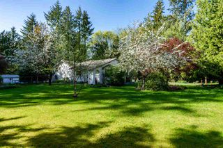 "Photo 18: 5517 245A Street in Langley: Salmon River House for sale in ""Strawberry Hills"" : MLS®# R2261991"