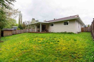 Photo 16: 24810 118A Avenue in Maple Ridge: Websters Corners House for sale : MLS®# R2264344