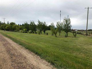 Photo 26: 25128 Coal Mine Road: Rural Sturgeon County Manufactured Home for sale : MLS®# E4119093