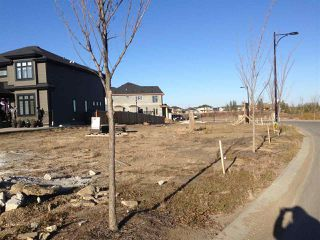 Main Photo: 1305 Adamson Drive in Edmonton: Zone 55 Vacant Lot for sale : MLS®# E4133562