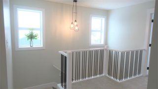 Photo 12: 3065 Carpenter Landing in Edmonton: Zone 55 House for sale : MLS®# E4142861