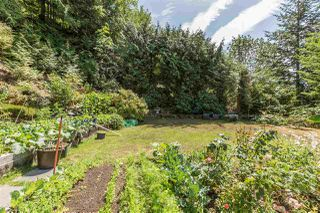 Photo 20: 310 OCEANVIEW Road: Lions Bay House for sale (West Vancouver)  : MLS®# R2344989