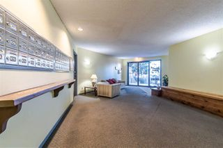 """Photo 20: 201 8040 BLUNDELL Road in Richmond: Garden City Condo for sale in """"BLUNDELL PLACE"""" : MLS®# R2346153"""