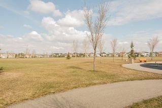 Photo 24: 17519 110 Street in Edmonton: Zone 27 House for sale : MLS®# E4155865