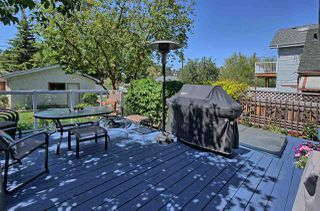 Photo 24: 9732 95 Street in Edmonton: Zone 18 House for sale : MLS®# E4158101