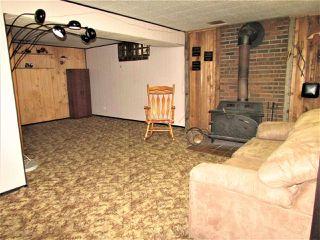 Photo 22: 9250 74 Street in Edmonton: Zone 18 House for sale : MLS®# E4159395