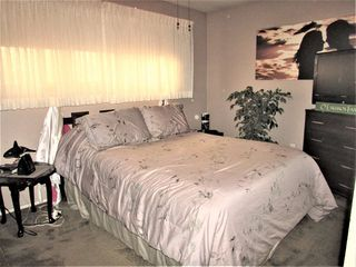 Photo 14: 9250 74 Street in Edmonton: Zone 18 House for sale : MLS®# E4159395