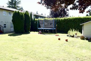 Photo 11: 20845 51B Avenue in Langley: Langley City House for sale : MLS®# R2481065