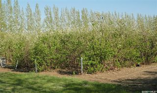 Photo 7: Lot-B Marina Orchard in Blucher: Lot/Land for sale (Blucher Rm No. 343)  : MLS®# SK819447
