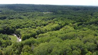 Photo 6: PARCEL A Barneys River Road in Avondale: 108-Rural Pictou County Vacant Land for sale (Northern Region)  : MLS®# 202016062