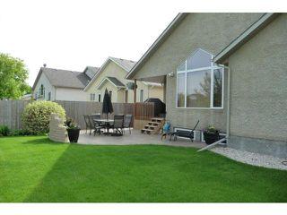 Photo 3: 317 Haney Street in WINNIPEG: Charleswood Residential for sale (South Winnipeg)  : MLS®# 1111521