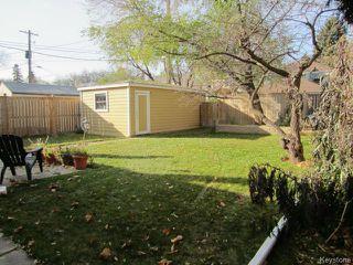 Photo 7: 439 Niagara Street in WINNIPEG: River Heights / Tuxedo / Linden Woods Residential for sale (South Winnipeg)  : MLS®# 1324041