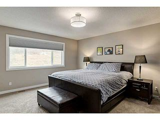 Photo 10: 419 CHAPARRAL VALLEY Way SE in Calgary: Chaparral Valley House for sale : MLS®# C3654170