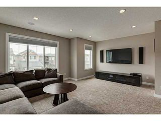 Photo 15: 419 CHAPARRAL VALLEY Way SE in Calgary: Chaparral Valley House for sale : MLS®# C3654170