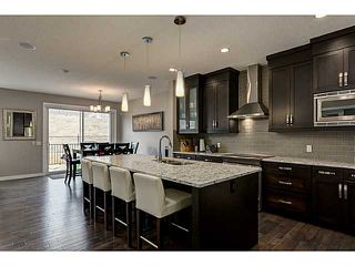 Photo 2: 419 CHAPARRAL VALLEY Way SE in Calgary: Chaparral Valley House for sale : MLS®# C3654170