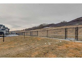 Photo 19: 419 CHAPARRAL VALLEY Way SE in Calgary: Chaparral Valley House for sale : MLS®# C3654170