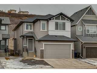 Photo 1: 419 CHAPARRAL VALLEY Way SE in Calgary: Chaparral Valley House for sale : MLS®# C3654170
