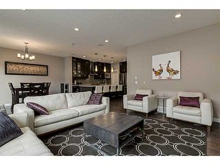 Photo 7: 419 CHAPARRAL VALLEY Way SE in Calgary: Chaparral Valley House for sale : MLS®# C3654170