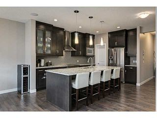 Photo 3: 419 CHAPARRAL VALLEY Way SE in Calgary: Chaparral Valley House for sale : MLS®# C3654170