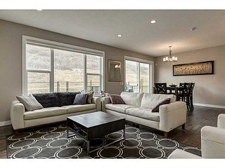 Photo 8: 419 CHAPARRAL VALLEY Way SE in Calgary: Chaparral Valley House for sale : MLS®# C3654170