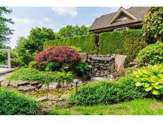 """Photo 20: 16133 MORGAN CREEK Crescent in Surrey: Morgan Creek House for sale in """"Morgan Creek"""" (South Surrey White Rock)  : MLS®# F1442523"""