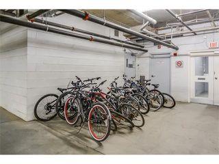 Photo 23: 208 60 ROYAL OAK Plaza NW in Calgary: Royal Oak Condo for sale : MLS®# C4033173