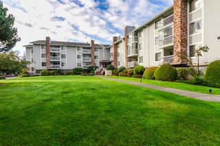 "Main Photo: 337 5379 205 Street in Langley: Langley City Condo for sale in ""HERITAGE MANOR"" : MLS®# R2025102"