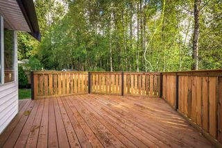 Photo 19: 3009 DELAHAYE Drive in Coquitlam: Canyon Springs House for sale : MLS®# R2108746