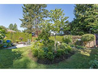 Photo 19: 23967 118TH Avenue in Maple Ridge: Cottonwood MR House for sale : MLS®# R2199339