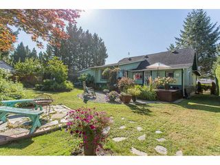 Photo 18: 23967 118TH Avenue in Maple Ridge: Cottonwood MR House for sale : MLS®# R2199339