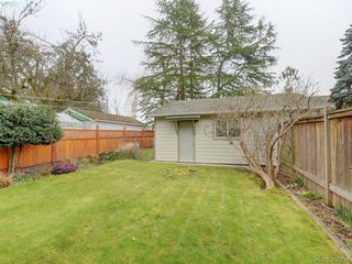 Photo 19: 947 Dunn Ave in VICTORIA: SE Quadra Full Duplex for sale (Saanich East)  : MLS®# 781222