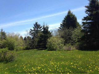 Photo 6: 2.4+/- ACRES MEMORY Lane in Seafoam: 108-Rural Pictou County Vacant Land for sale (Northern Region)  : MLS®# 201809571