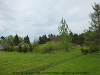 Photo 11: 2.4+/- ACRES MEMORY Lane in Seafoam: 108-Rural Pictou County Vacant Land for sale (Northern Region)  : MLS®# 201809571