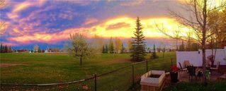Photo 38: 84 DOUGLAS SHORE Close SE in Calgary: Douglasdale/Glen Detached for sale : MLS®# C4215893