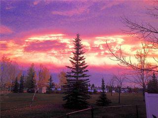 Photo 37: 84 DOUGLAS SHORE Close SE in Calgary: Douglasdale/Glen Detached for sale : MLS®# C4215893