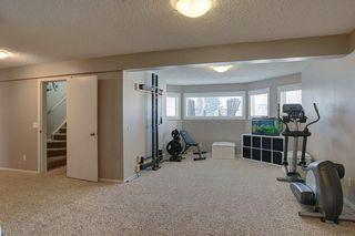 Photo 19: 84 DOUGLAS SHORE Close SE in Calgary: Douglasdale/Glen Detached for sale : MLS®# C4215893