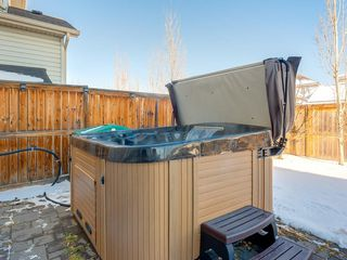 Photo 42: 139 WENTWORTH Circle SW in Calgary: West Springs Detached for sale : MLS®# C4215980