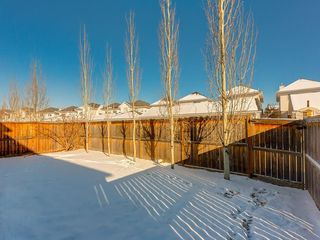 Photo 43: 139 WENTWORTH Circle SW in Calgary: West Springs Detached for sale : MLS®# C4215980