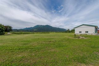 Photo 19: 47715 BALLAM Road in Chilliwack: Fairfield Island House for sale : MLS®# R2327778