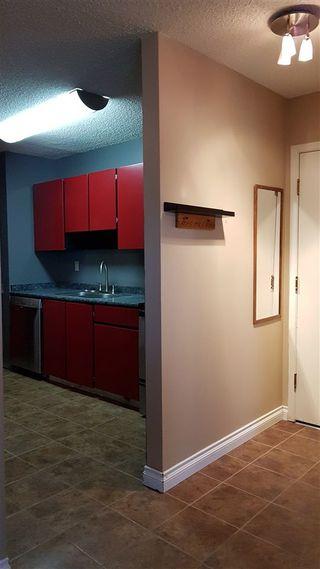 Photo 14: 317 2319 119 Street in Edmonton: Zone 16 Condo for sale : MLS®# E4143376