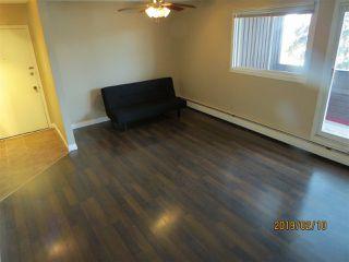 Photo 7: 317 2319 119 Street in Edmonton: Zone 16 Condo for sale : MLS®# E4143376
