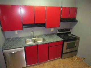 Photo 11: 317 2319 119 Street in Edmonton: Zone 16 Condo for sale : MLS®# E4143376