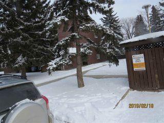 Photo 4: 317 2319 119 Street in Edmonton: Zone 16 Condo for sale : MLS®# E4143376