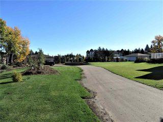 Photo 3: 1221 127 Street in Edmonton: Zone 55 House for sale : MLS®# E4156111