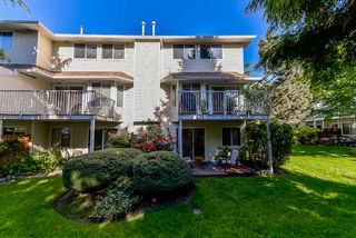 """Photo 17: 18 8250 121A Street in Surrey: Queen Mary Park Surrey Townhouse for sale in """"Barkerville II"""" : MLS®# R2366413"""