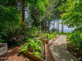 Photo 20: 7649 EUREKA Place in Halfmoon Bay: Halfmn Bay Secret Cv Redroofs House for sale (Sunshine Coast)  : MLS®# R2377267