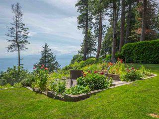 Photo 17: 7649 EUREKA Place in Halfmoon Bay: Halfmn Bay Secret Cv Redroofs House for sale (Sunshine Coast)  : MLS®# R2377267