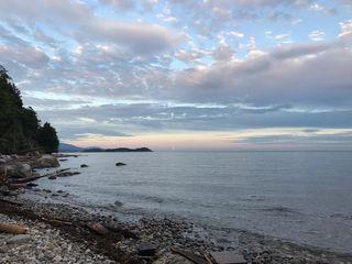Photo 4: 7649 EUREKA Place in Halfmoon Bay: Halfmn Bay Secret Cv Redroofs House for sale (Sunshine Coast)  : MLS®# R2377267
